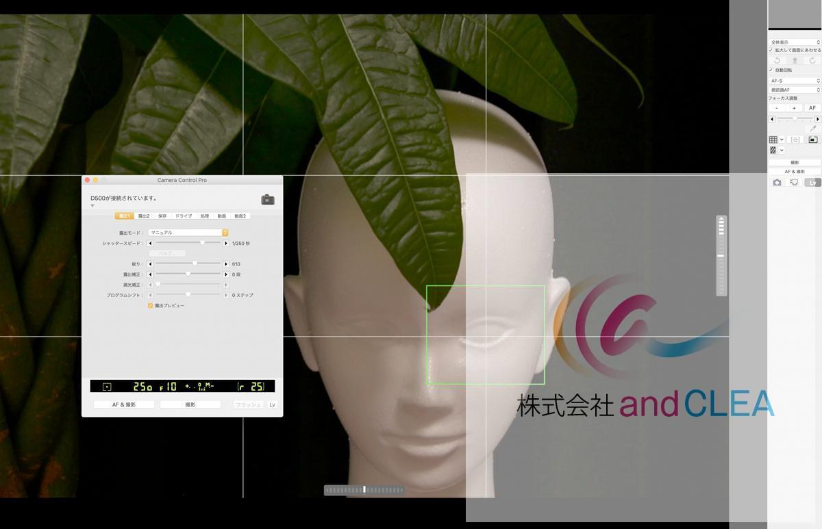 テザー撮影のイメージ パソコン上の操作画面